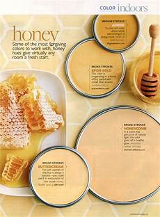 better homes and gardens honey january 2010 paint