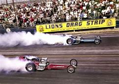 Long Island Drag Racing Amazon Store  Lions THE