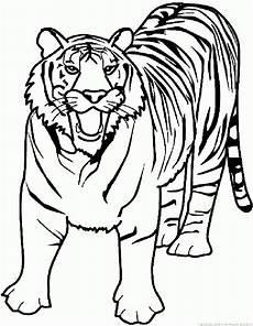 Malvorlagen Tiger Motor Tiger Coloring Pages Part 5