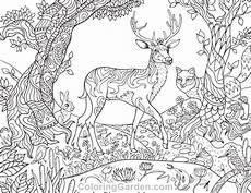 forest creatures coloring page