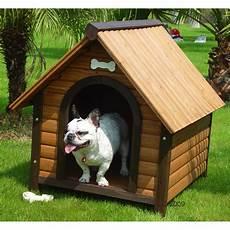 niche pour chien tout pour construire une niche pour