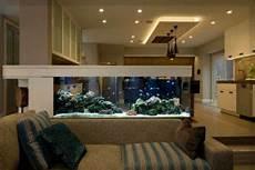 kleines aquarium wohnzimmer aquarium fische und pflanzen