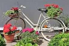 deko fahrrad für blumen auch eine gute deko idee f 252 r den garten laatzen