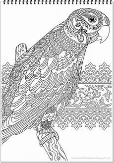papagei mandala ausmalbilder zum ausdrucken parrot mandala