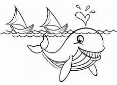 Gambar Mewarnai Ikan Paus Contoh Gambar Mewarnai