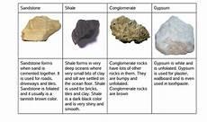 sedimentary rock rose s rock website