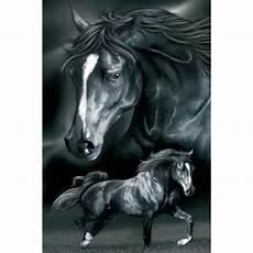 grand drap de plage motif cheval drap de plage cheval pour 2