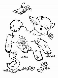 baby animal coloring pages free printable 17237 baby sheep animal coloring page for animal coloring pages printables free wuppsy