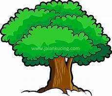 10 Gambar Pohon Vektor Terbaik Untuk Desain Anda