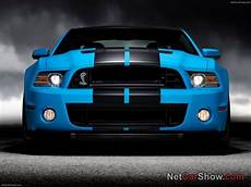 shelby mustang gt500 shelby mustangs 20 pictures of new shelby mustang gt500