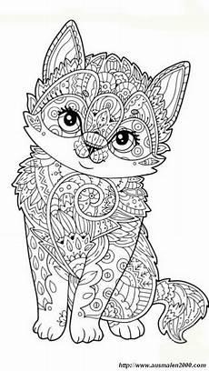ausmalbilder mandalas bild kleine sehr freundliche katze