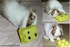 jouet lapin lapins jouet pour lapin lapin nain et lapin