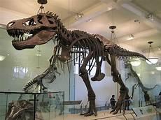 quot tyrannosaurus rex quot the ripper dinosaurs forum