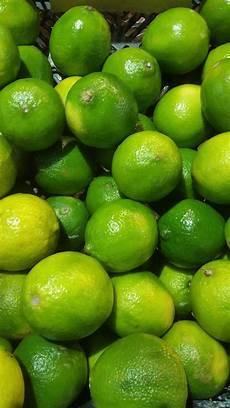 citron vert citron vert 500g