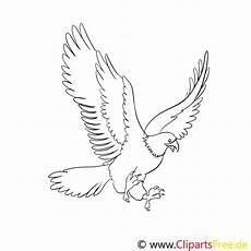 Ausmalbilder Zum Drucken Adler Adler Ausmalbilder F 252 R Kinder Gratis