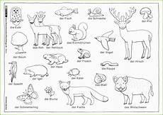 Ausmalbilder Grundschule Biologie Arbeitsbl 228 Tter Zum Ausdrucken Frische 15