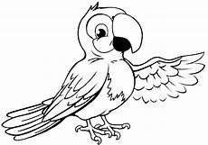Ausmalbilder Tiere Papagei Schlangen Ausmalbilder Studio Design Gallery Best