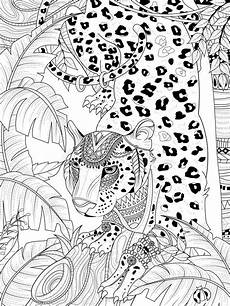 jungle leopard coloring page stock illustration