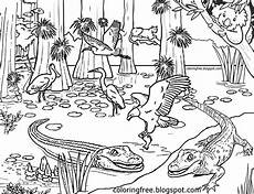 australia animals coloring pages 16900 free coloring pages printable pictures to color drawing ideas