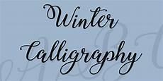 winter calligraphy font 183 1001 fonts