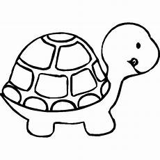 animal coloring page for toddlers 17335 animal coloring sheets pics of animals animals coloring turtle coloring pages