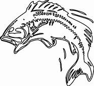 Bass Fish Body Print Coloring Pages  Best Place To Color