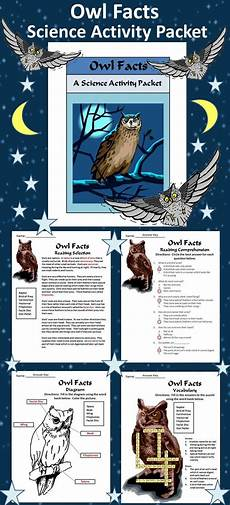 owls activities owl facts science activity bundle 2nd 3rd grade color b w science