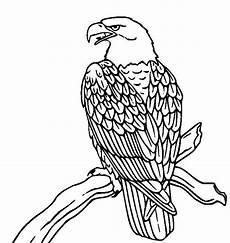 Kostenlose Malvorlagen Tiere Cheats Ausmalbilder Adler Vogel Malvorlagen Ausmalbilder