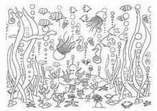 fische im meer mit korallen ausmalbilder fische