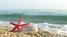 caribbean christmas stock footage video 4567289