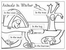 animals in winter worksheets for kindergarten 14199 1000 images about hibernation on bears animals and activities