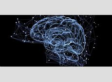 cognitive science degree careers