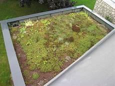 toit terrasse vegetal une toiture v 233 g 233 tale 233 par 233