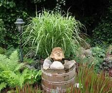 Ein Biotop Im Garten Anlegen Tipps F 252 R Einen Kleinen
