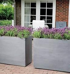 jardiniere haute bois jardiniere grise pas cher