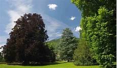 grandi giardini grandi giardini italiani festeggia 20 anni 8 nuovi