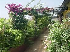 terrazzo fiorito tutto l anno piscine e giardini paghera uno stile per ogni esigenza