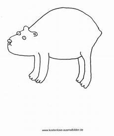 Malvorlagen Zum Ausdrucken Wombat Malvorlagen Ausmalbilder Wombat Ausmalbilder Und