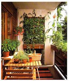 Balkon Ideen Pflanzen - plants to grow on balconies
