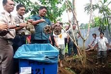 Penyelundupan 840 Blangkas Ke Malaysia Digagalkan
