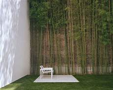 garden with bamboo wall decoration interior design