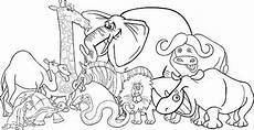 groups of animals coloring pages 17000 black and white illustration of safari animals zoo animal