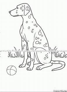Malvorlagen Hundepfoten Malvorlagen Hunde