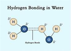 hydrogen bond diagram a simple explanation of intermolecular forces with exles