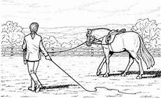 Malvorlagen Pferde Zum Ausdrucken Ausmalbilder Pferde Mit Reiterin Ausmalbilder Pferde
