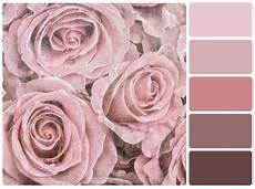 What S The Difference Between Dusty Pink And Dusky Pink