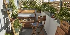 quelles plantes et arbustes privil 233 gier pour une terrasse