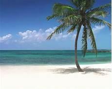 atlantis paradise island towers bahamas reviews pictures videos map visual