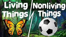 living and learn living things and nonliving things for nursery pre