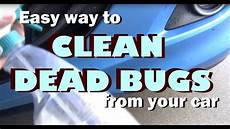 easy way to clean remove dead bugs from your car youtube